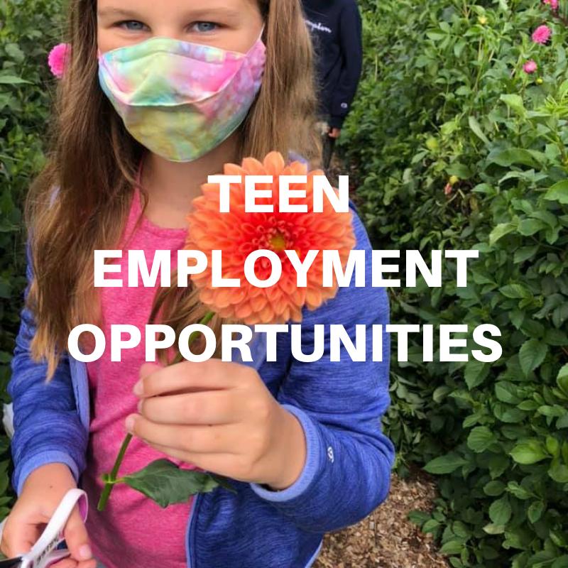 teen employment block for website